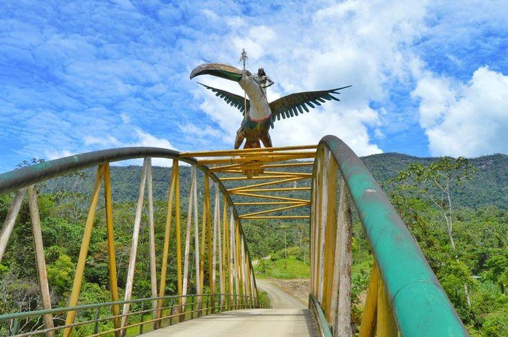 """Ruta de los Tepuyes, Alto Nangaritza, Zamora Chinchipe, Amazonia de Ecuador..! """"Zamora Chinchipe pulmón de la madre tierra, fuente de agua y vida""""  #juanpi_lara #Ecuador #Amazonia #ZamoraChinchipe #Nangaritza #RutaDeLosTepuyes #Naturaleza #Flora #Fauna #Aventura #Experiencia #Cascadas #Cavernas #AllYouNeedIsEcuador #InstameetEc #PrimerolaComunidad #Instagrames #TurismoEcuador #FeriadoEcuador #TurismoSocial #EcuadorAmaLaVida #PromocionTuristica #ViajaPrimeroEcuador"""
