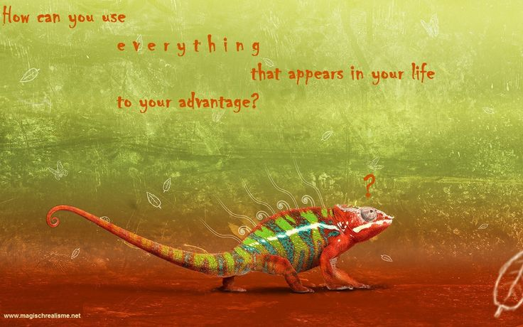 How do you use e v e r y t h i n g that appears in your life to your advantage?