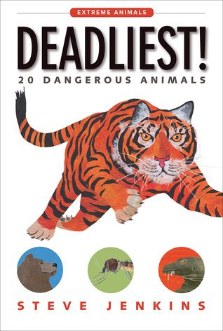 In the autumn of 2017 renowned author illustrator Steve Jenkins released the first two books in a new series, Extreme Animals, for early readers.  Deadliest!: 20 Dangerous Animals (Houghton Mifflin Harcourt, October 10, 2017) focuses on those animals who prey and protect using the most dangerous means. Usually the recipients of their actions are other animals but humans are not entirely safe.
