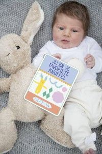 milestone baby cards nederlands: 30 geillustreerde kaarten met verschillende teksten en mijlpalen in een giftbox.