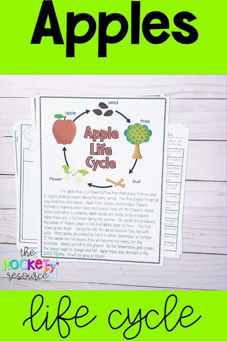Labor Day Constitution Day Johnny Appleseed September Themed Worksheets Fall Classroom Activities Character Traits Graphic Organizer Informational Reading Passages [ 1102 x 735 Pixel ]