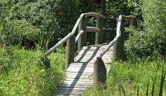 Jack Pine Trail Ottawa