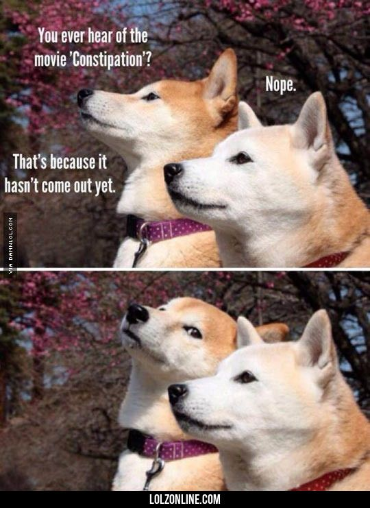 Shibes Talking About Movies #lol #haha #funny