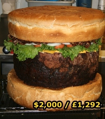 the most ridiculous priced hamburger ever lol