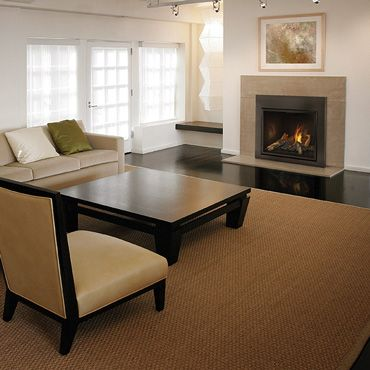 Living Room - Transitional - Napoleon Fireplaces