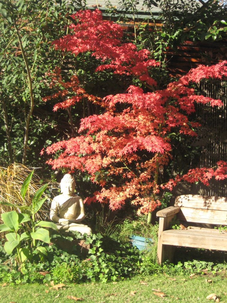 Best 25+ Feng shui garden design ideas on Pinterest Feng shui - feng shui garten bagua