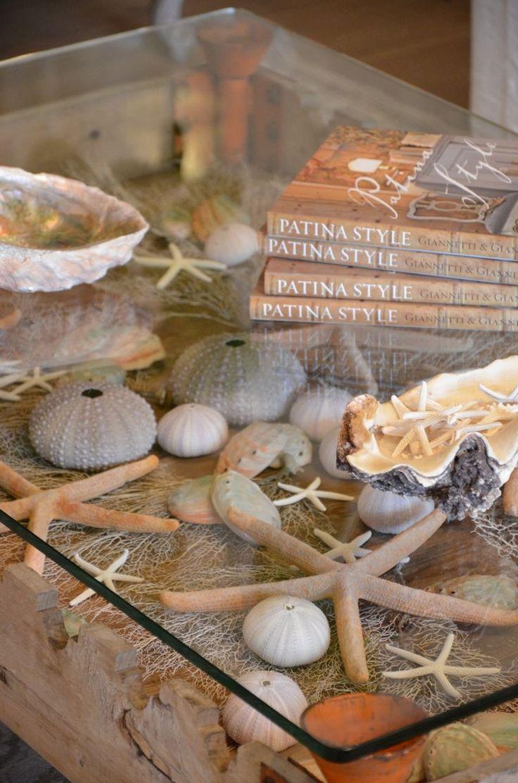 Nice way to display seaside treasures .