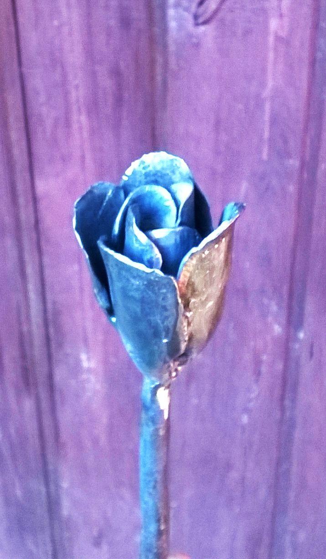 still missing a few petals