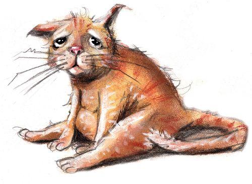 illustrasjoner av kattepuser - Google-søk