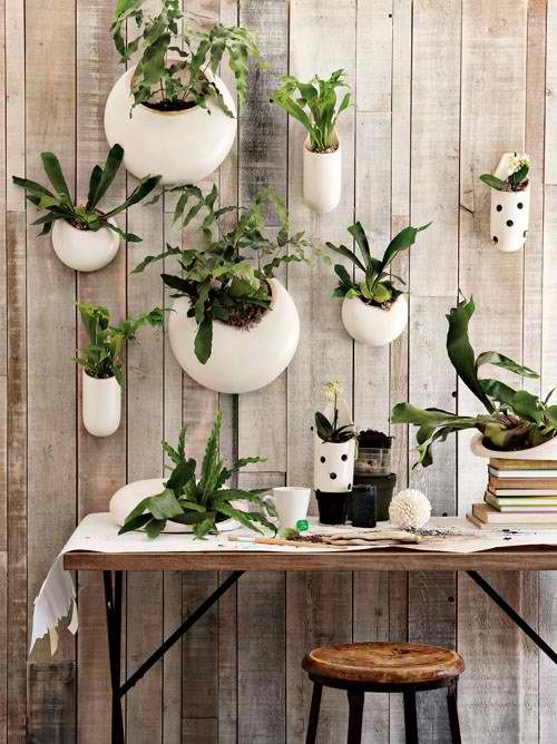 hang cute containers on the wall for plants. This could look super cute in my kitchen!