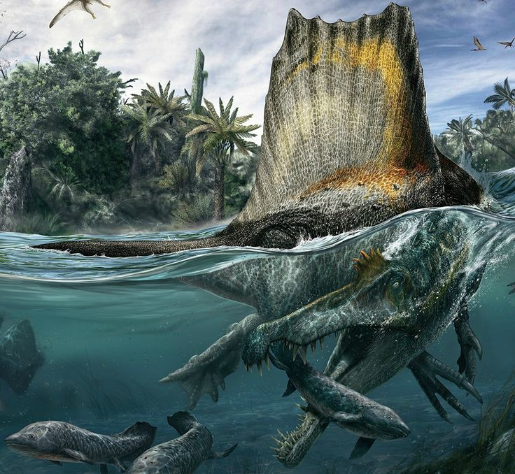 Spinosaurus has changed dramatically since I was a kid. The model I used to terrorize my other toys with looked like an overgrown Allosaurus with a giant sail on its back. As paleontologists rearra...
