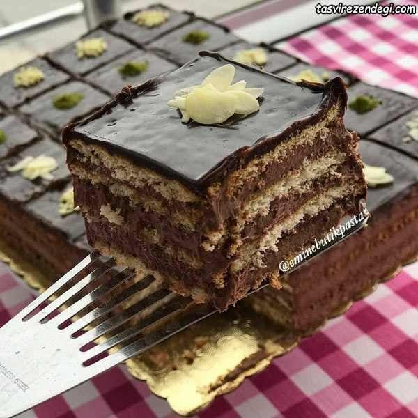 طرز تهیه کیک بیسکویت شکلاتی دسر مجلسی و خوشمزه مجله تصویر زندگی Turkish Desserts Yummy Cakes Dessert Recipes