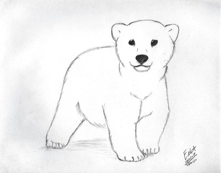 Cute cartoon polar bear cubs - photo#28