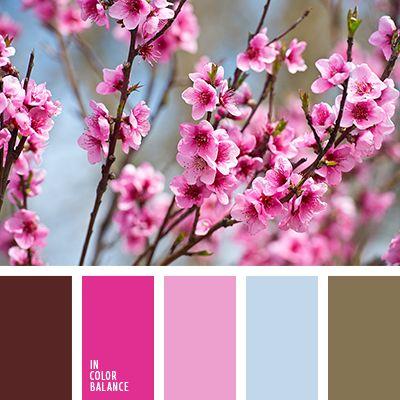 """""""бейби блу"""" цвет, бледно-голубой, бледно-малиновый, бордовый, лиловый цвет, малиновый, оттенки розового, оттенки цветов вишни, цвет цветков сакуры, яркие оттенки цветов вишни."""