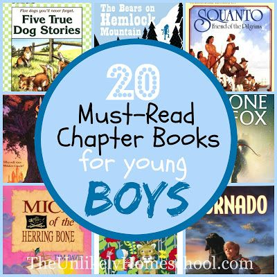 The Unlikely Homeschool: 20 Must-Read Chapter Books for Young Boys