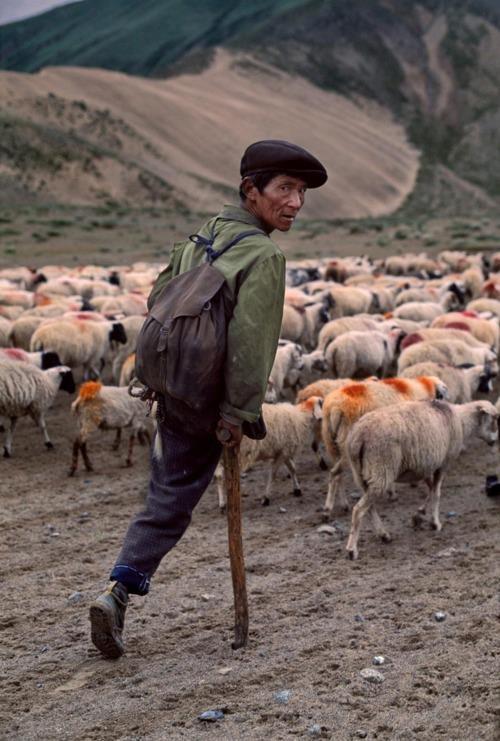 TIBET-10685, Tibet © Steve McCurry