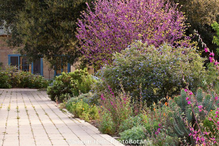 pin garden