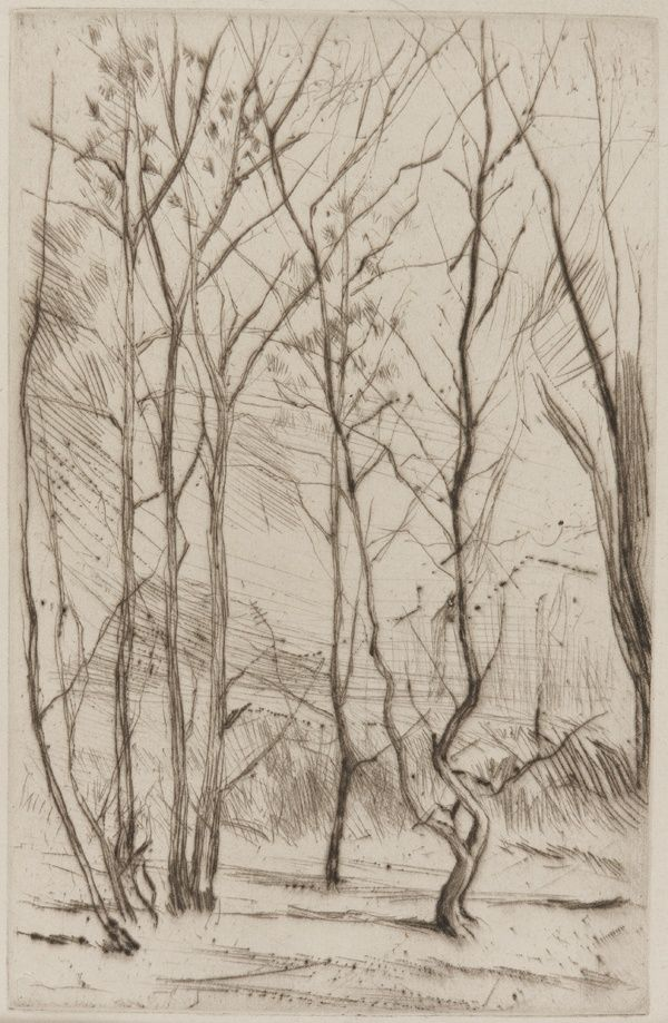 James McNeill Whistler (Am. 1834-1903), The Dam Wood, ca. 1875, Drypoint on paper, Washington, Freer Gallery of Art, Smithsonian Institution Intercepted by Gravitation