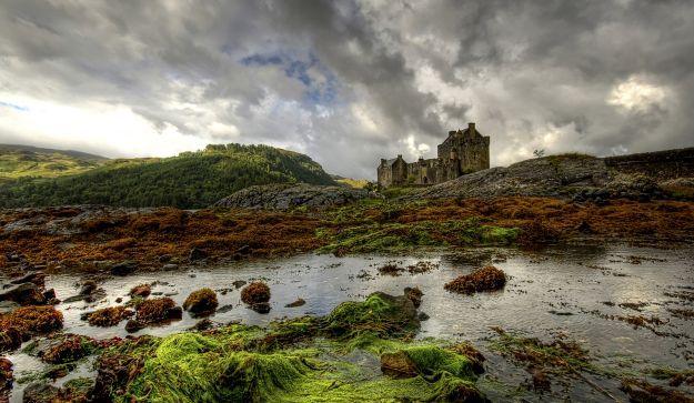 skotske højland - Google-søgning