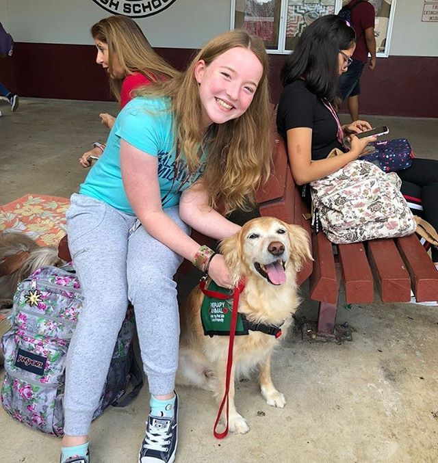 The Animal Assisted Therapy Is A True Blessing For Me They Came To My School After The Msd Shooting And Really Helped Me Therapy Dogs Animals Humane Society