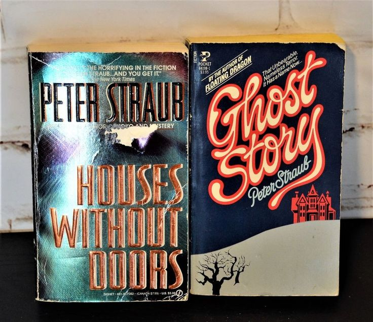 Lot of 2 Peter Straub Paperback Books Houses Without Doors