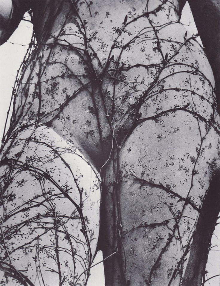 VILEMREICHMANN: Photos, Body, Inspiration, Art, Posts, 1941, Photography