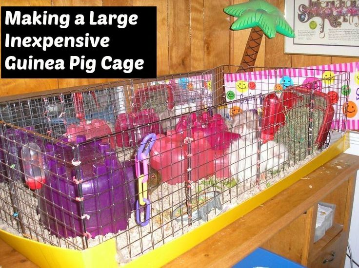 1000 ideas about cheap guinea pig cages on pinterest for Build your own guinea pig cage