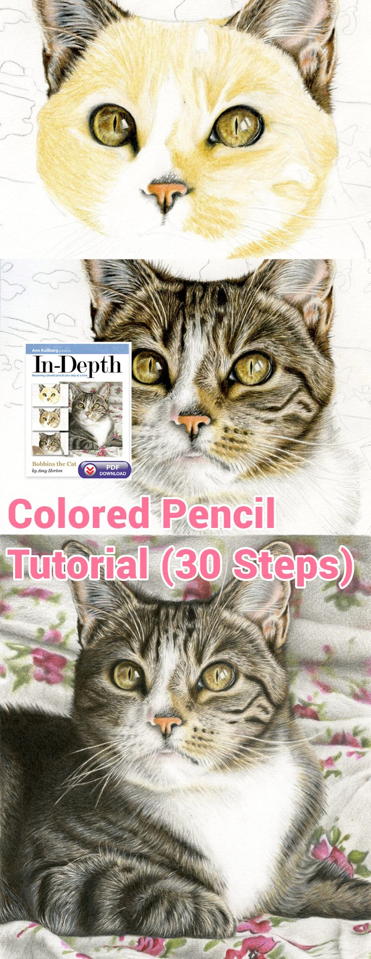 Bobbins the Cat is the purrr-fect way to kick start the new year. From step 1 to done, this In-Depth colored pencil tutorial will teach you life-like fur and whisker techniques.