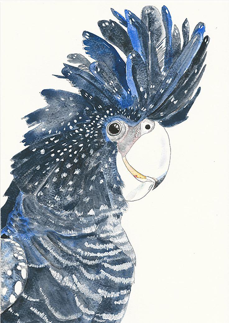 Red-tailed Black Cockatoo - Fine Art Giclée Print of a black cockatoo by LittleRowanRedhead on Etsy