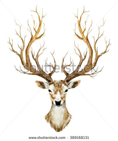 Watercolor Illustration Isolated Deer Big Antlers