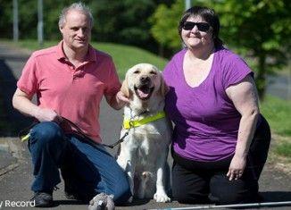 Un chien guide d'aveugle sauve sa maîtresse tombée dans un coma diabétique en plein sommeil