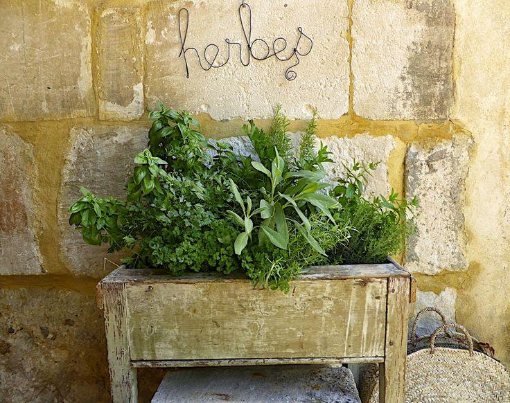 manon 21 bac bois pour herbes