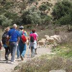Wandelweek op Kreta Griekenland