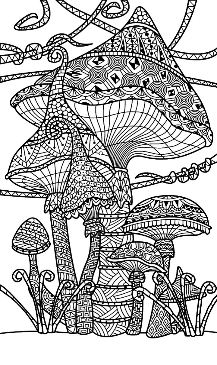 mushroom and toadstools zentangle coloring page - Zentangle Coloring Book