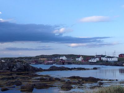 The Adventures of Kathryn: Why I Have Been MIA AKA Adventures on Fogo Island Newfoundland
