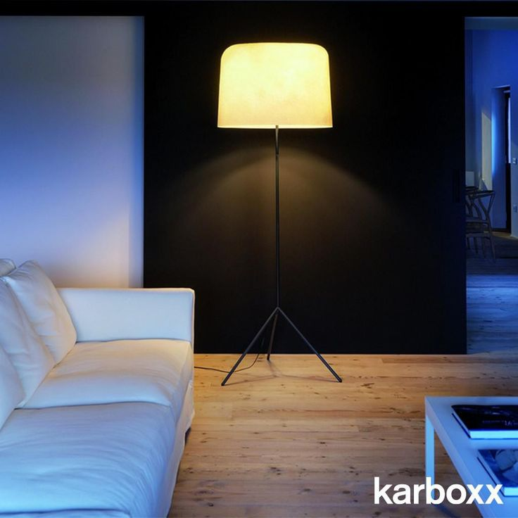 Ola Floor Lamp - Karboxx