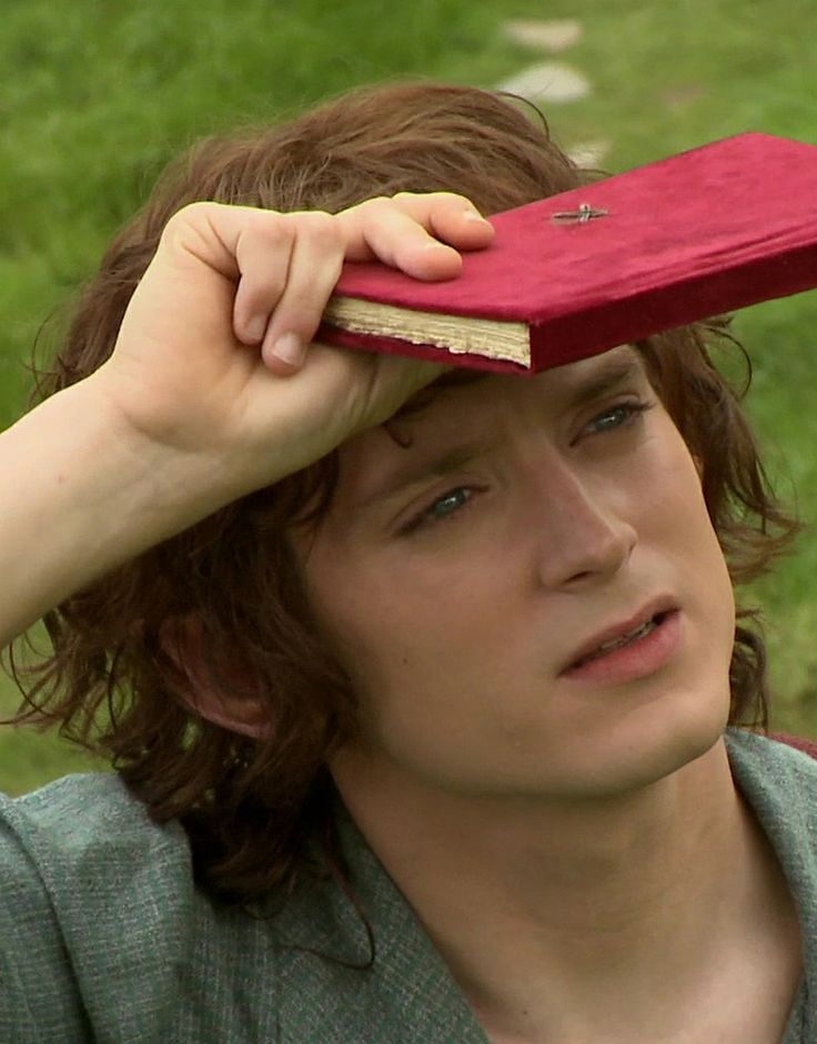 I love Frodo baggins (Elijah wood) his character is so cute
