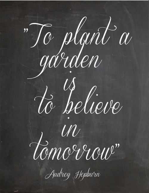 To plant a garden is to believe in tomorrow… Audrey Hepburn, Garden, Home and Party:
