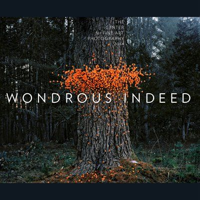 Wondrous Indeed Exhibition Catalog with Phillip Toledano and The Center for Fine Art Photography. All proceeds from book sales benefit C4FAP. http://www.c4fap.org/store/ #c4fap
