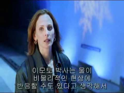 (2-2) 양자물리학과 마음.What The Bleep Do We Know의 2편 Down the rabbit hole 2.avi - YouTube