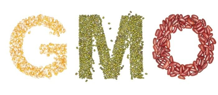 Аналіз вмісту ГМО якісно та кількісно