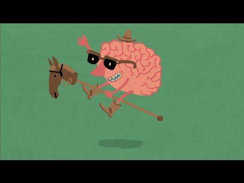 Brains at play - NPR video