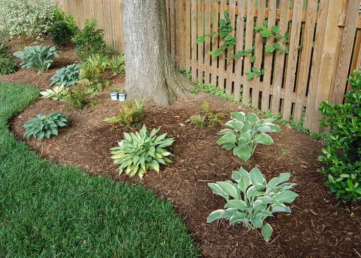 17 best ideas about landscape around trees on pinterest - Landscaping around a tree ...