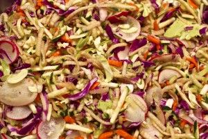 cabbage lemon apple salad - saladmaster