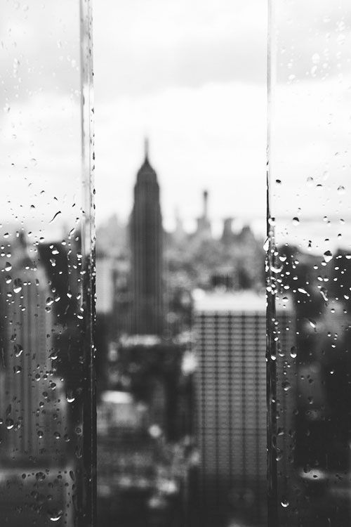 i love the depth of field, the black & white, the framing, the clarity of the droplets, everything.