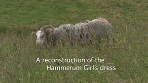 Film om fremstilling af Hammerum-pigens kjole.  Varighed 8 min Engelsk udgave