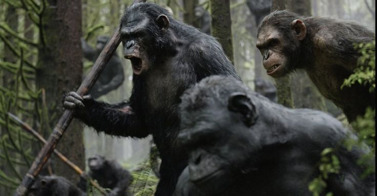 Does Dawn of the Planet of the Apes Have a Woman Problem?