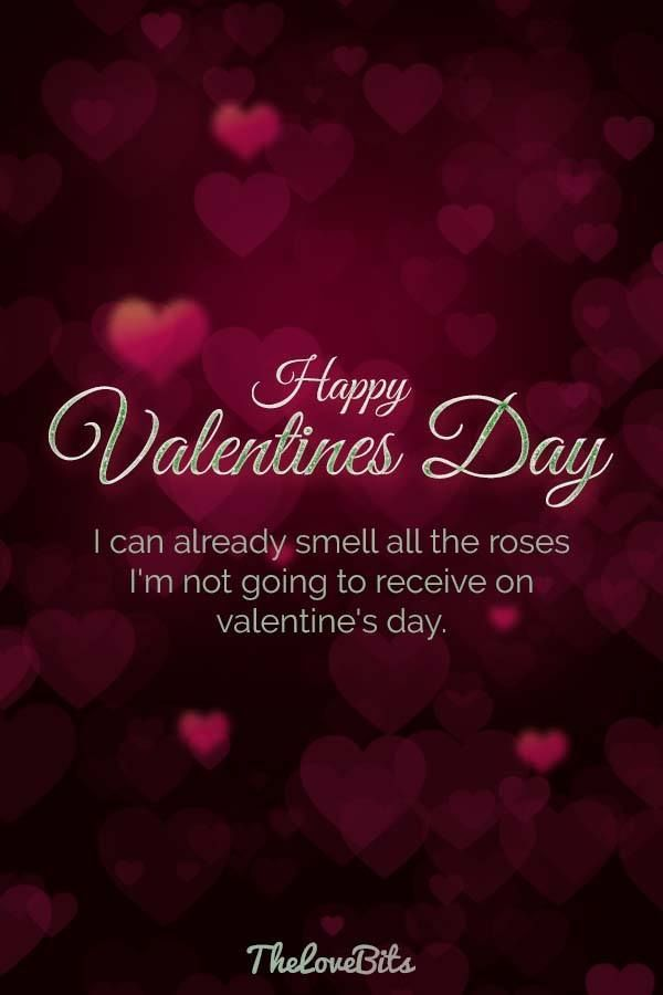 valentins day sayings xhosa funny valentines day quotes