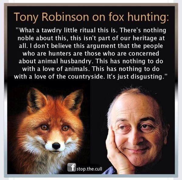 Animal Abuse Quotes By Famous People: 348 Best Famous Quotes / People Images On Pinterest