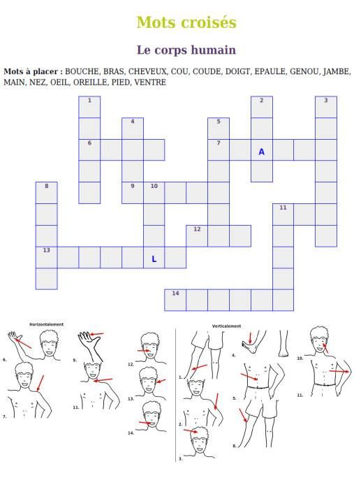 mots croisés: le corps humain - Cool game - especially for graduate - could even do that at home to practice